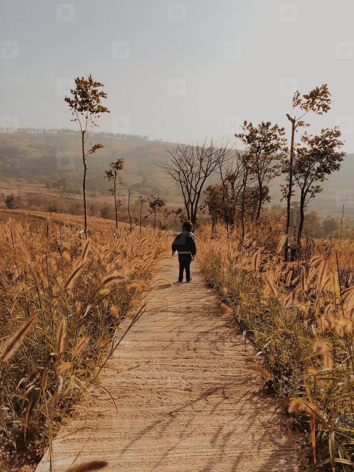 Child on Pathway