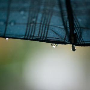 Rainy days  4