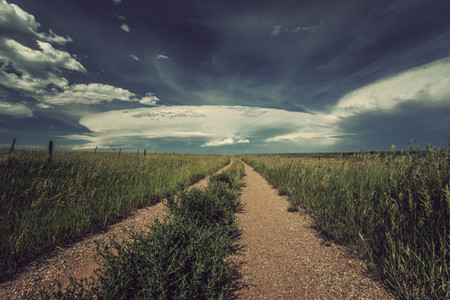 Lonely path in Colorado