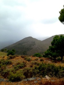 Andalusian Hillscape