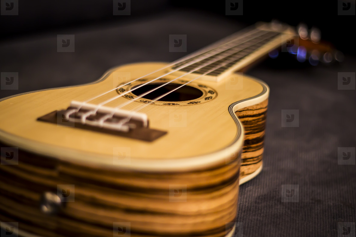 Ukulele Close Up