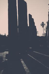 Shadows