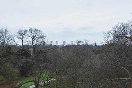 Kew Gardens 03