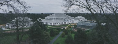 Kew Gardens  07