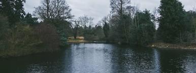 Kew Gardens  09