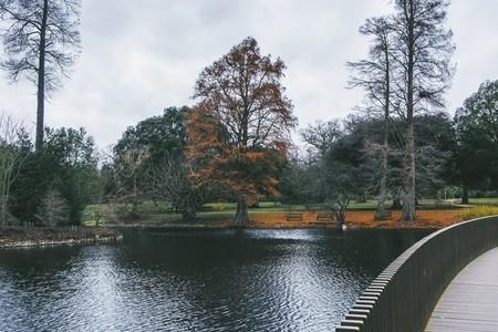 Kew Gardens 08