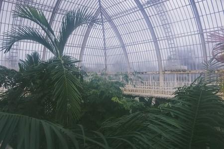 Kew Gardens 23