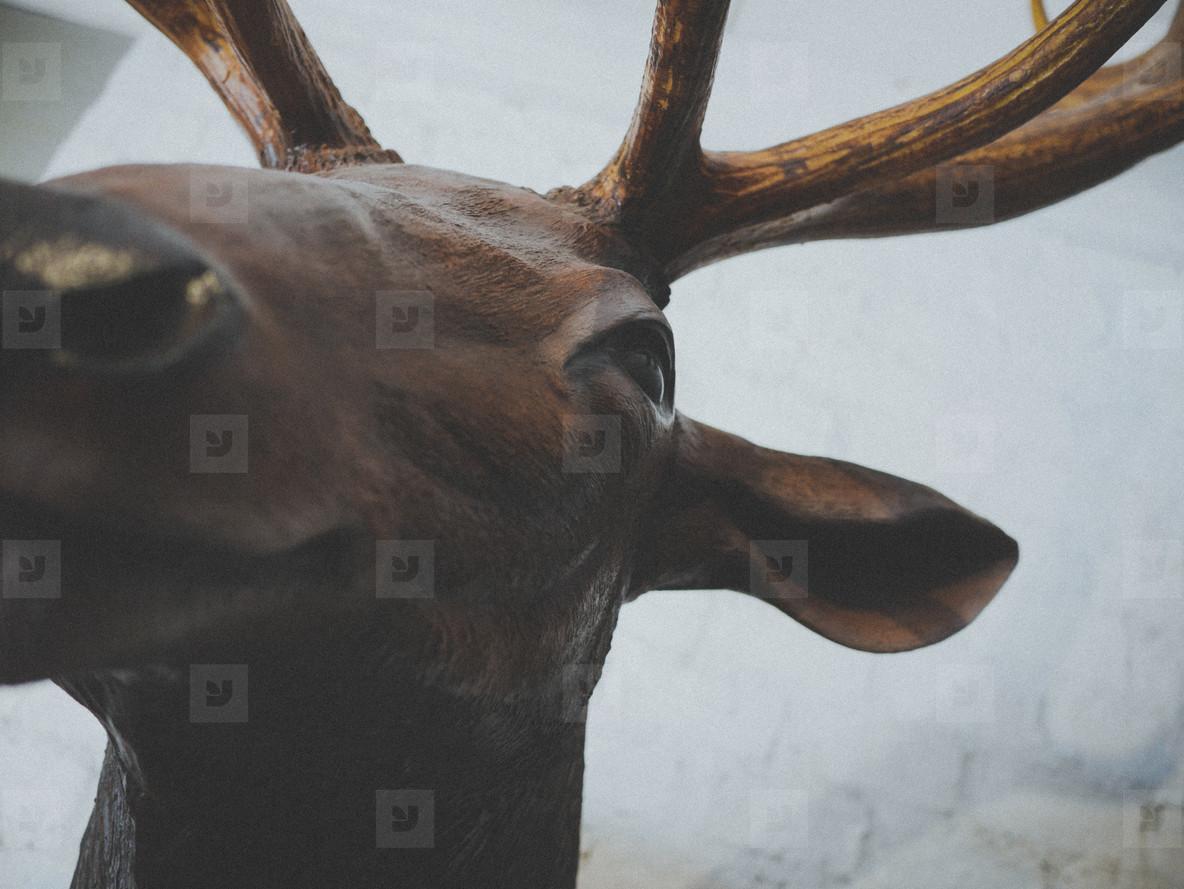 Fake Animal Head