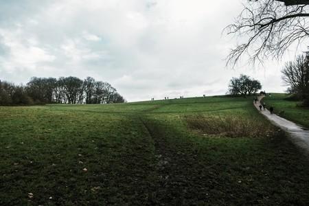Hampstead Heath  1