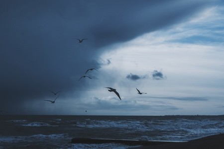 Brighton Beach 15