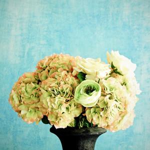 rose in vase for decoration