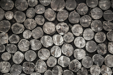 Black  White Woods Texture