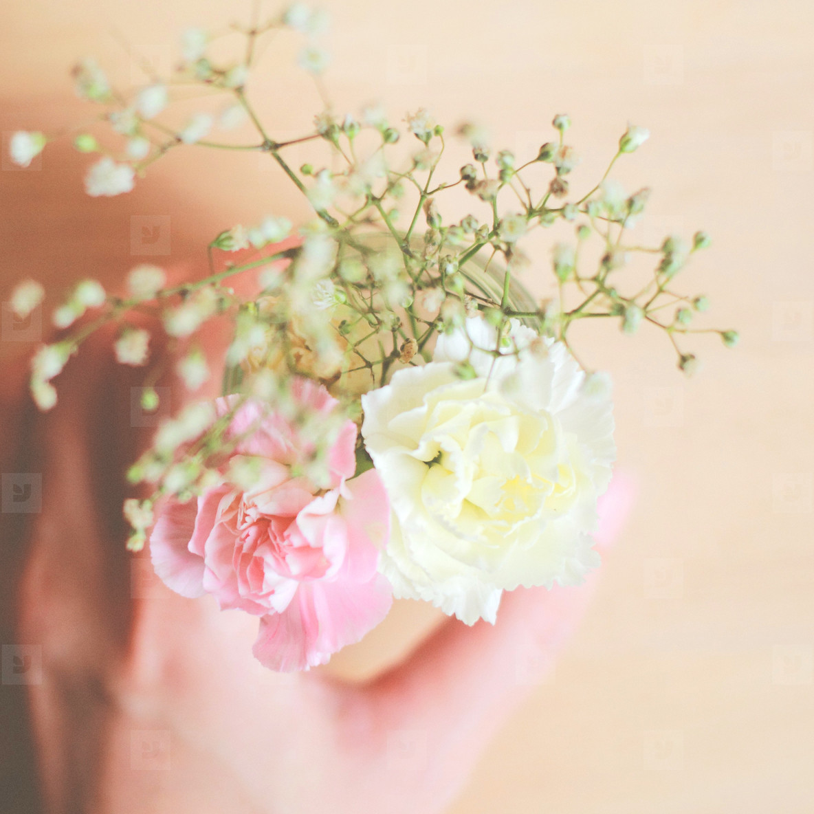 Woman hand holding flower