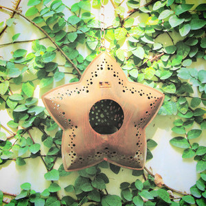 Old star hanging for decorated