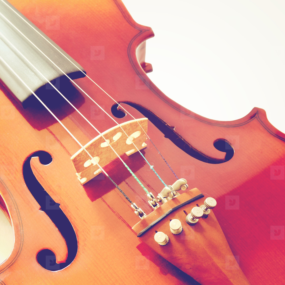 Part of violin