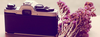 Old camera and flower