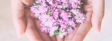 Pink flowers in hands