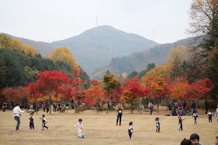 Asian Park