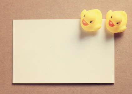 Two doll ducks on blank card
