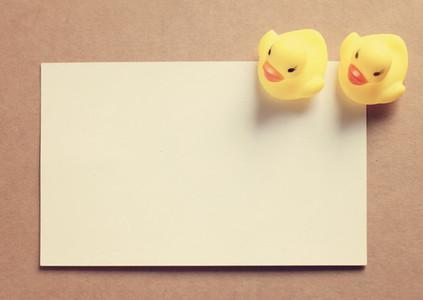 Two doll ducks on blank card