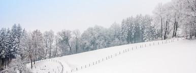 Dreamy landscape winter