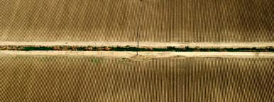 Aerial View Crops