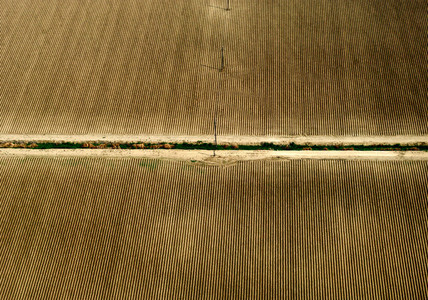 Aerial View Crops