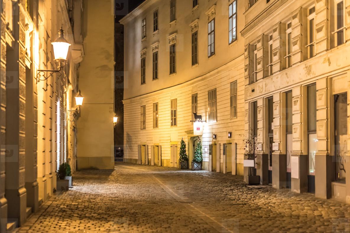 Vienna historic city