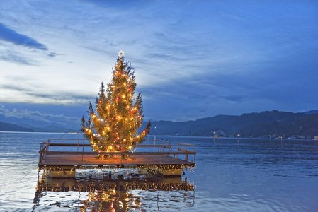 Swimming christmas tree