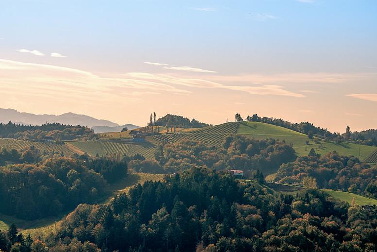 Autumn landscape   wine hills