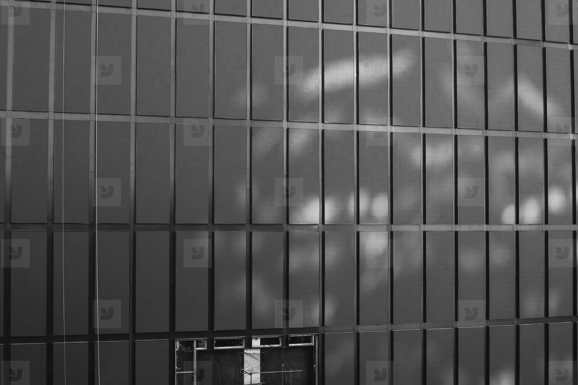 Architectural Grid