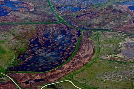 Water Aerial