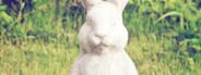 Statue of rabbit in the garden