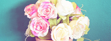 Rose in flowerpot