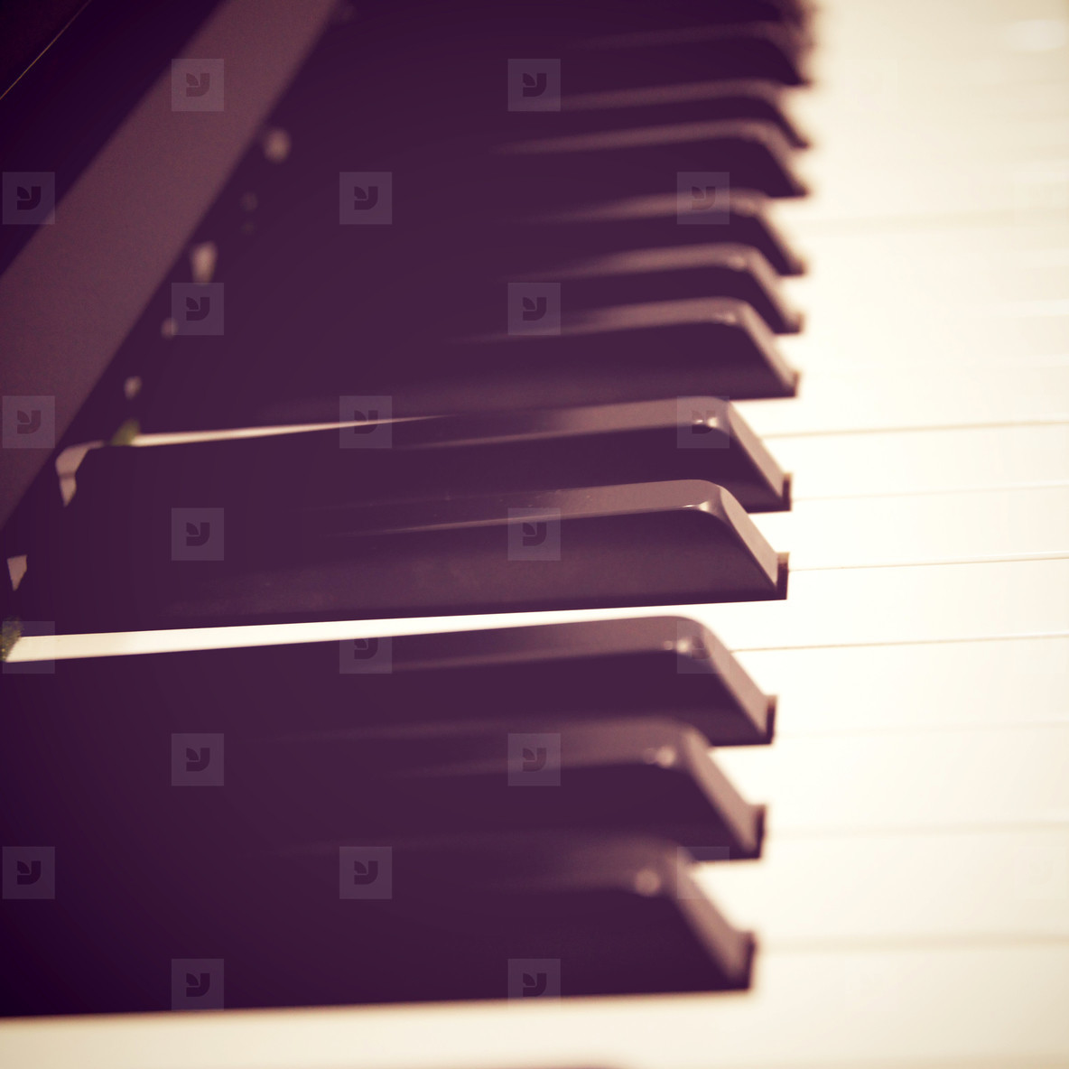 Close up of piano keys