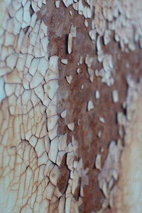 paint on rust texture