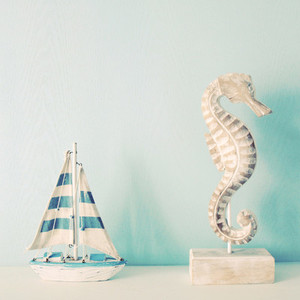 Seahorse and ship for decorated