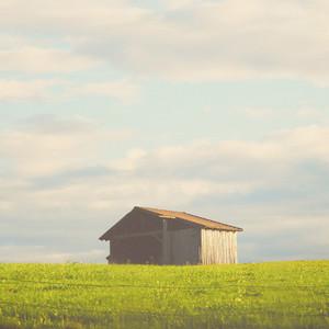 wooden hut on the field