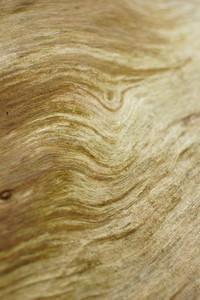 old wood 8