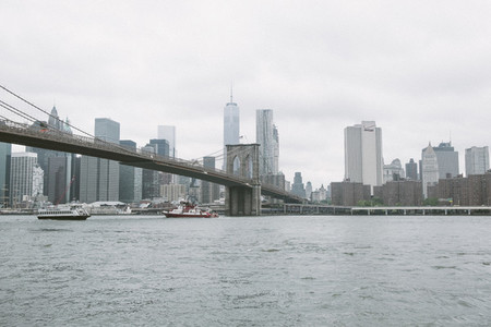 New York 24