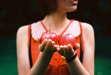 Red apples in woman hands