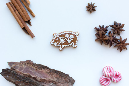 Gingerbread pig cookie