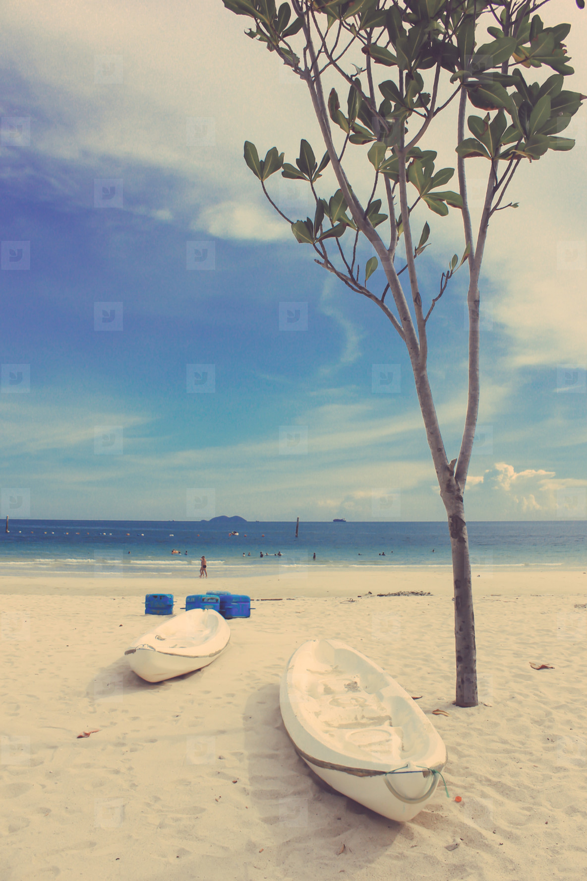 Tree and kayaks on the beach