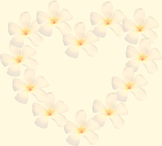 frangipani shape as heart