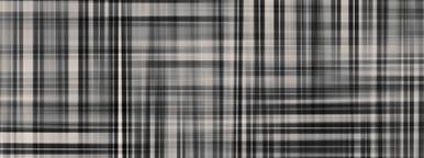 Monochrome XXI