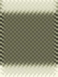 Monochrome XVII