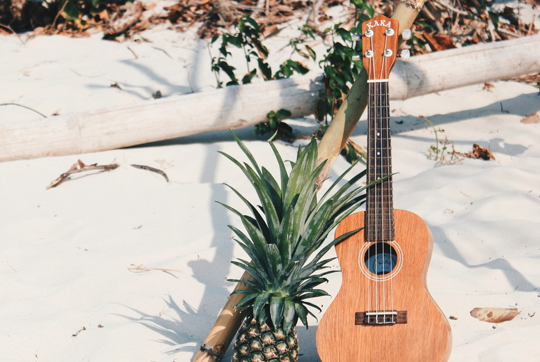 Pine Apple with A Ukulele