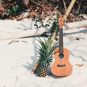 Pine Apple with A Ukulele