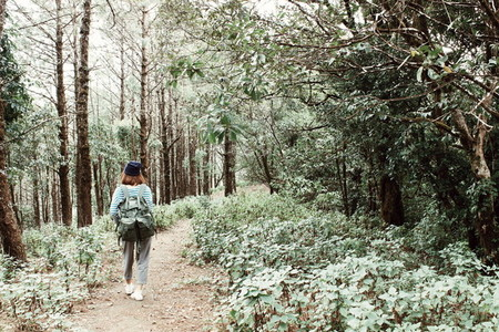 Female hiker walking in forest2