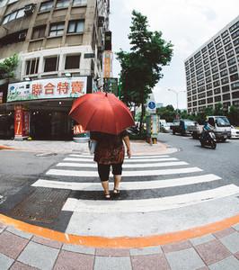 Taipei Lady